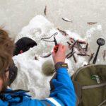 Ice fishing in April