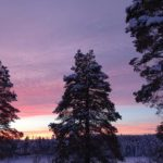 Dusk in winter Rovaniemi